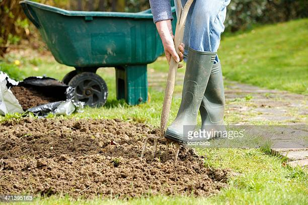 Caucasian Gardener Forking A Patch In the Garden