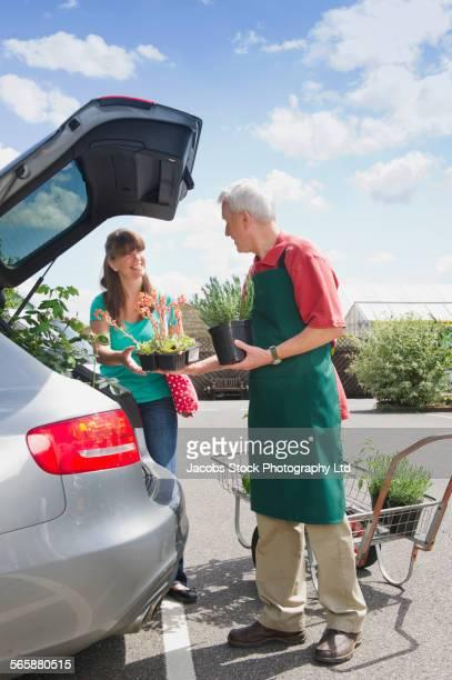 Caucasian gardener helping customer load plants into car trunk in nursery