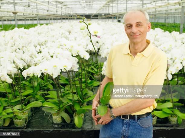 Caucasian gardener standing with flowers in greenhouse