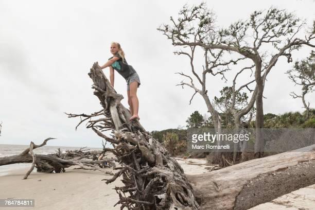 Caucasian girl climbing on driftwood on beach