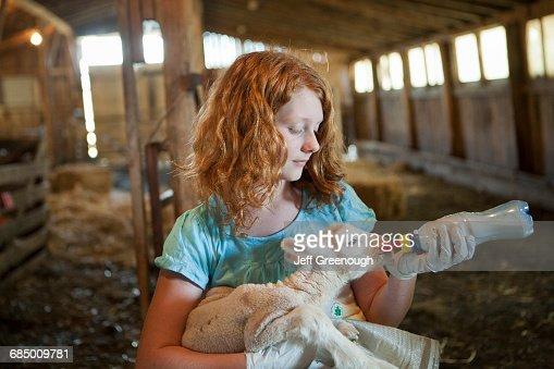 Caucasian girl feeding bottle to lamb
