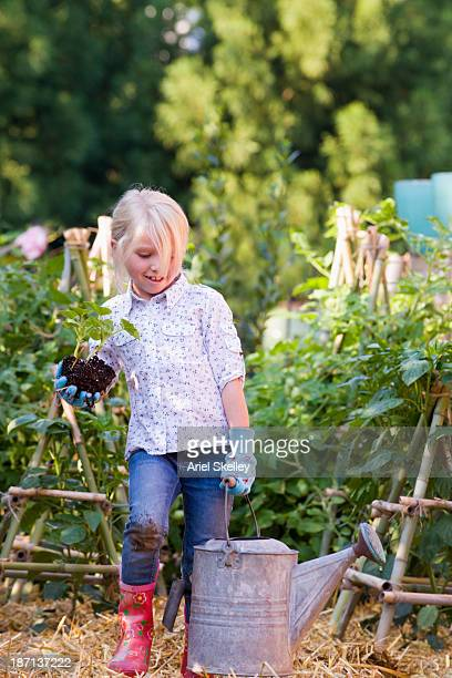 caucasian girl gardening - one girl only stock pictures, royalty-free photos & images