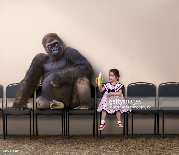 Caucasian girl offering banana to gorilla