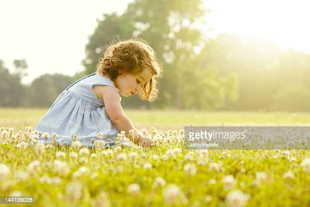 Personne de race blanche fille cueillir des fleurs dans le champ