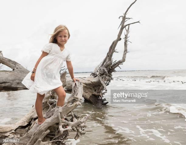 Caucasian girl posing on driftwood at beach
