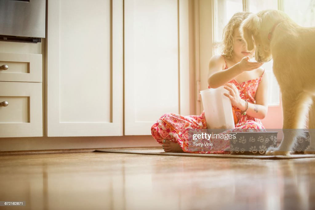 Caucasian girl sitting on kitchen floor feeding dog : Stock Photo