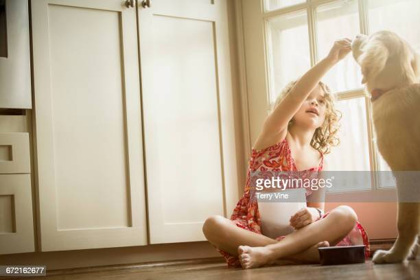 caucasian girl sitting on kitchen floor feeding dog - dog eats out girl stock pictures, royalty-free photos & images
