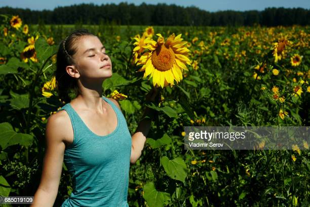 Caucasian girl smelling sunflowers in field
