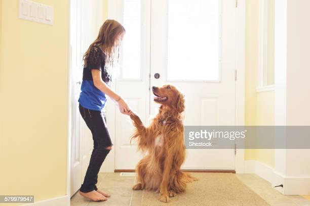 Caucasian girl training dog to shake paw