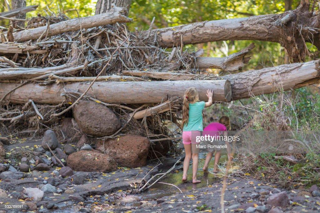 Caucasian girls exploring creek in forest : Foto stock