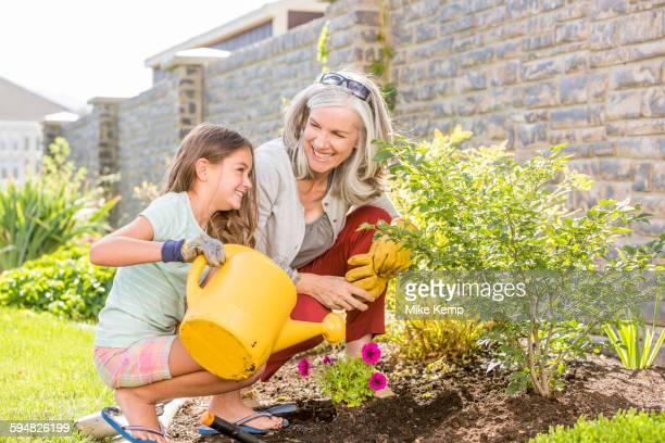 Caucasian grandmother and granddaughter gardening in backyard