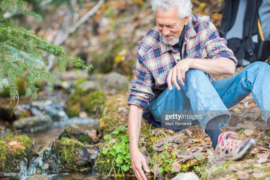 Caucasian hiker dipping fingers in forest creek : Foto stock