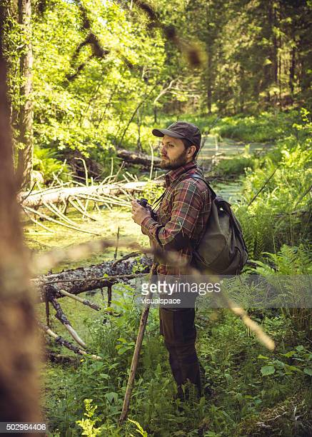 Caucasian Hiker In A Sunlit Forest Swamp
