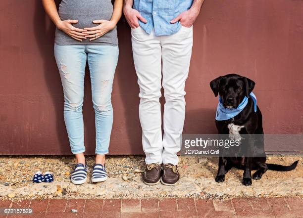Caucasian man and expectant mother with dog and baby shoes