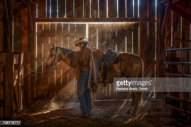 Caucasian man brushing horse in barn