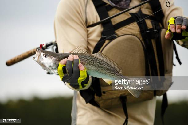 caucasian man holding fishing rod and fish - sports glove stock pictures, royalty-free photos & images