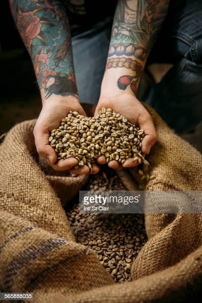 Caucasian man holding raw coffee beans