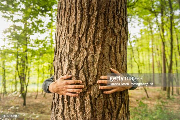 Caucasian man hugging tree in forest