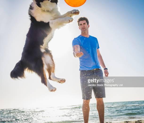 caucasian man playing with dog on beach - alleen één mid volwassen man stockfoto's en -beelden