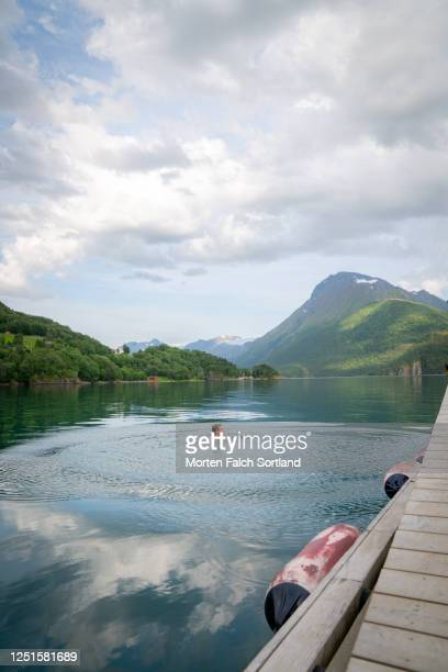 caucasian man swimming on a stunning lake in halsa, norway - skinny dipping stock pictures, royalty-free photos & images