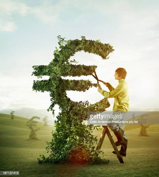 caucasian man trimming hedge in shape of euro symbol - euro symbol stock photos and pictures