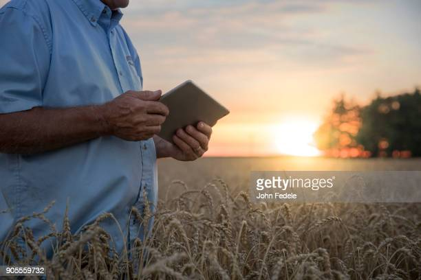 Caucasian man using digital tablet in field of wheat