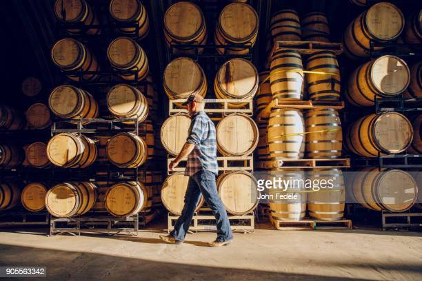 caucasian man walking near barrels in distillery - distillery stock pictures, royalty-free photos & images