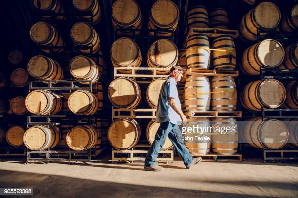 caucasian man walking near barrels in distillery - viniculture stock pictures, royalty-free photos & images