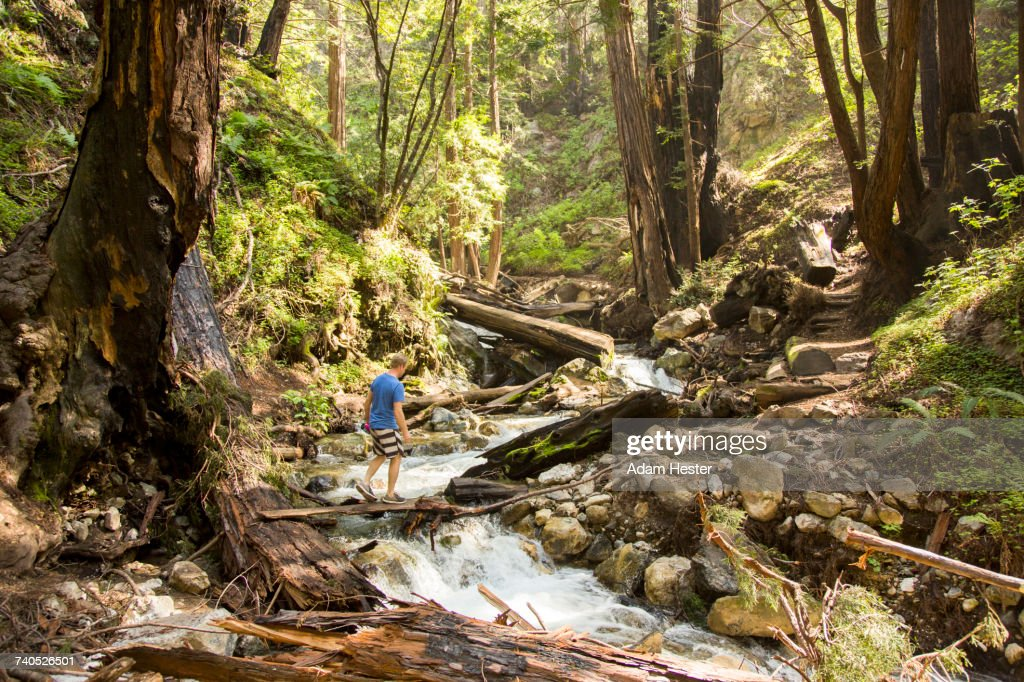Caucasian man walking on wooden plank over forest stream : Stock Photo