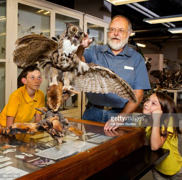 Caucasian man working with specimens in natural history museum