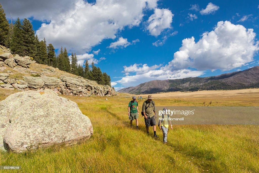 Caucasian men and boy hiking in grassy remote landscape : Foto stock