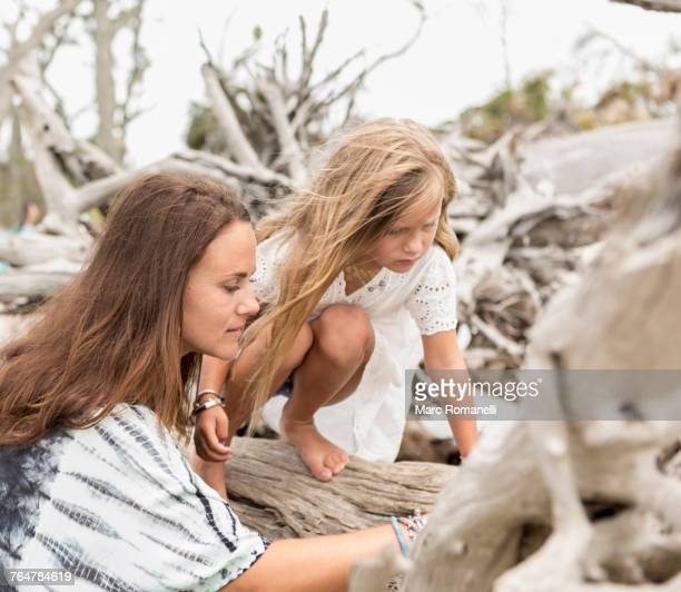 Caucasian mother and daughter examining driftwood on beach