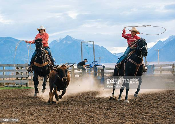 Caucasian mother and son chasing cattle at rodeo