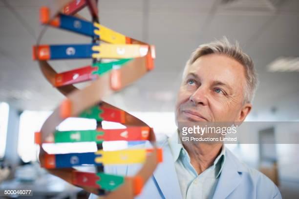 Caucasian scientist examining molecular model in lab