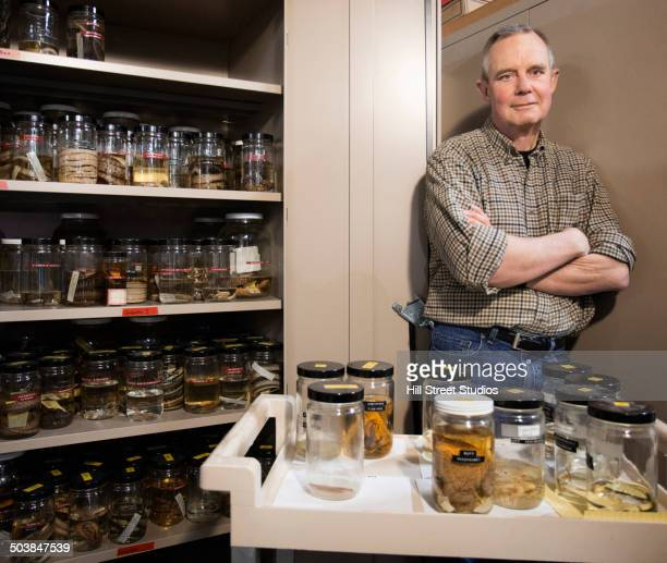caucasian scientist smiling in natural history museum - collection stock pictures, royalty-free photos & images