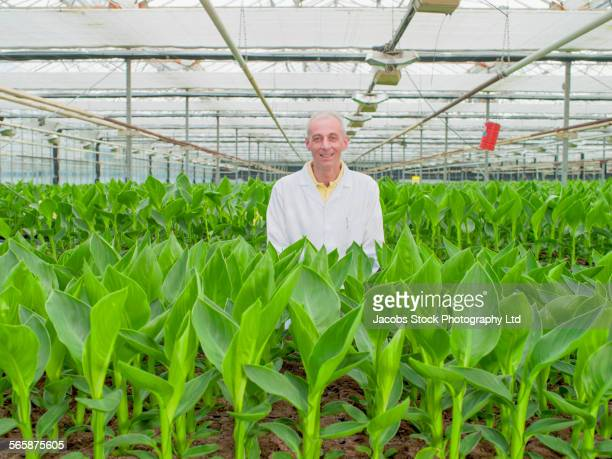 Caucasian scientist standing with green plants in greenhouse