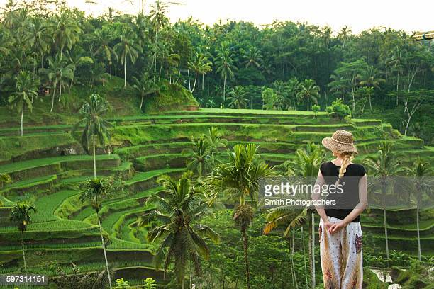 Caucasian tourist admiring rural rice terrace, Ubud, Bali, Indonesia