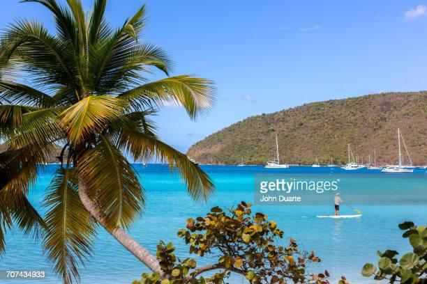 Caucasian tourist using paddle board in tropical ocean