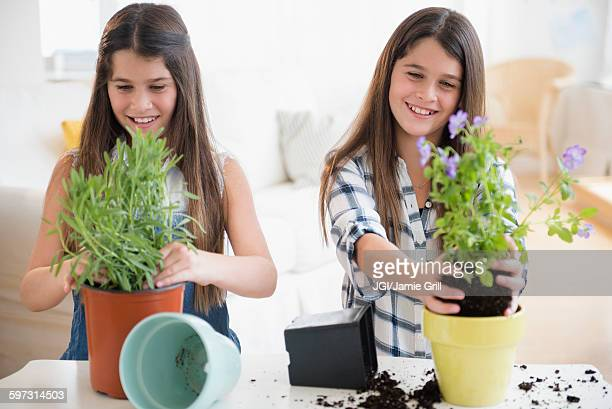 Caucasian twin sisters planting flowers