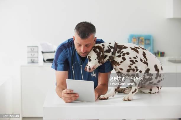 Caucasian veterinarian cuddling dog and using digital tablet