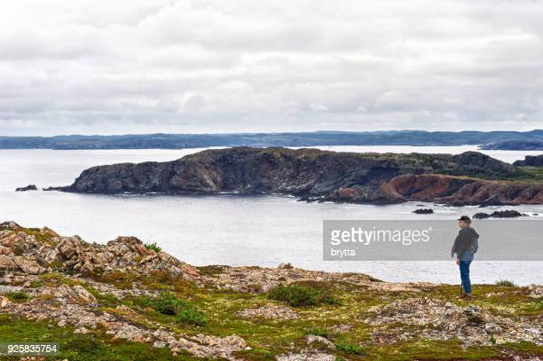 caucasian woman admiring the scenery during a hike near twillingate, newfoundland,canada - newfoundland and labrador stock pictures, royalty-free photos & images