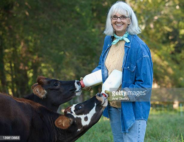 caucasian woman feeding bottles to calves - female animal stock pictures, royalty-free photos & images
