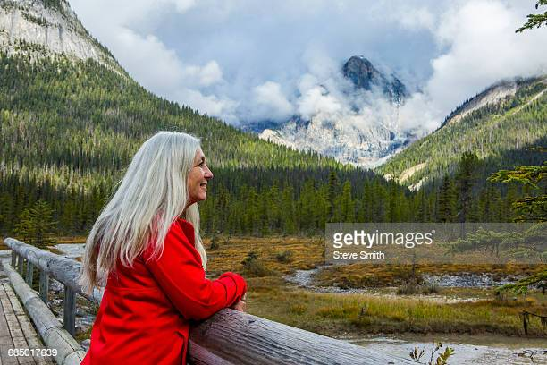 caucasian woman leaning on wooden railing admiring mountain - lake louise stock photos and pictures