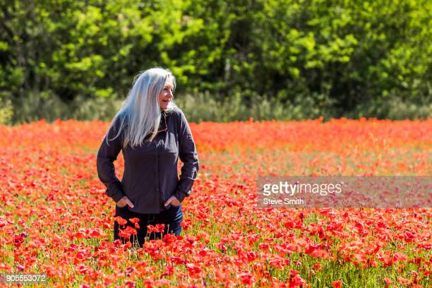 caucasian woman looking away in field of flowers - poppy field stock photos and pictures