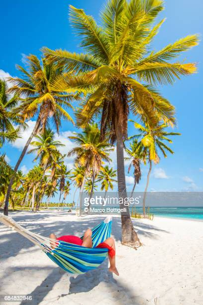 caucasian woman lying on hammock on a tropical beach. - paisajes de republica dominicana fotografías e imágenes de stock