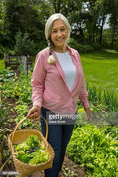 Caucasian woman picking vegetables in garden