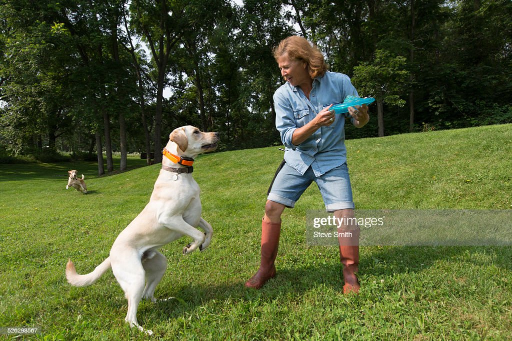 Caucasian woman playing with dog in park : Stock Photo