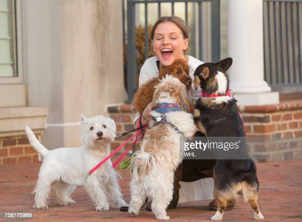 caucasian woman playing with dogs on city sidewalk - dog walker stock photos and pictures