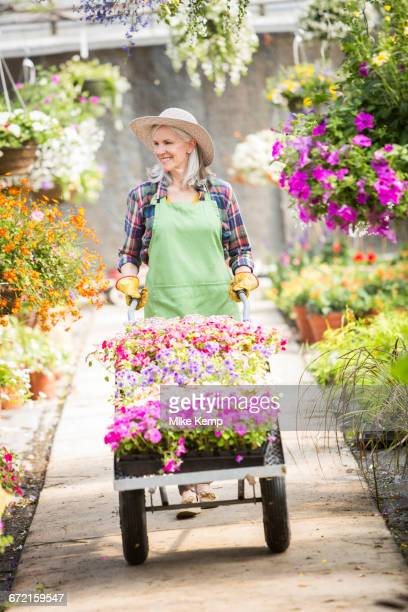Caucasian woman pushing cart of potted plants in greenhouse
