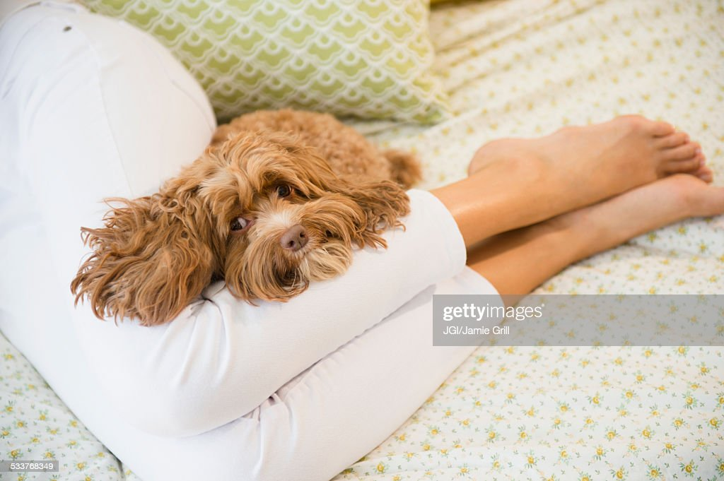 Caucasian woman relaxing with pet dog : Foto stock